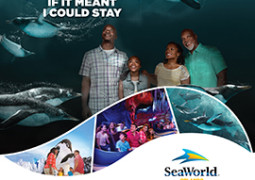 Sea World Ad 270