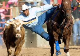 cowboy at rodeo credit photo y Roy Dabney